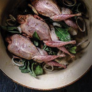 whole oven ready quail pot